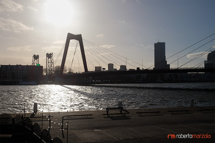 Willemsbrug bridge - Rotterdam